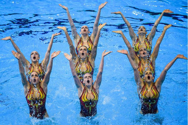 Фото №1 - Российским синхронисткам запретили выступать в купальниках с изображением медведя