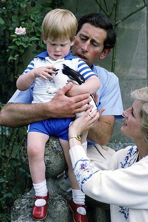 Фото №3 - Сын Меган и Гарри будет донашивать одежду за детьми Миддлтон