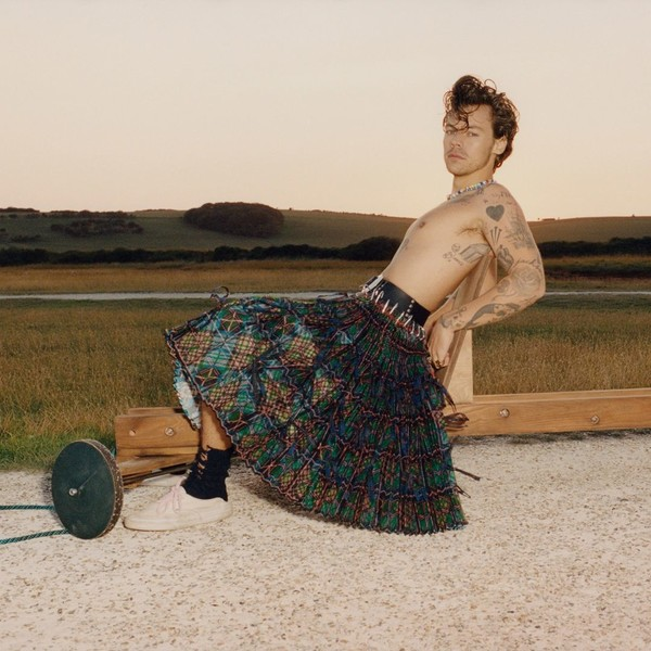 Фото №3 - Гарри Стайлс ответил на обвинения из-за фотосессии в юбках