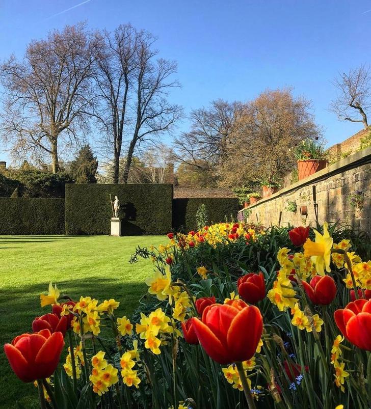 Фото №1 - Английский сад на дачном участке: советы эксперта