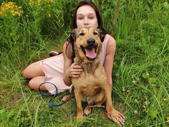 Фото №4 - Котопёс недели: кошка Дороти и собака Морковка