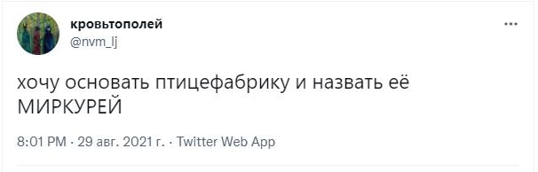 https://n1s2.hsmedia.ru/99/a3/82/99a382cfa7a0e4b9aa7bc9e62b49666d/606x194_0xac120003_73842841630340184.png