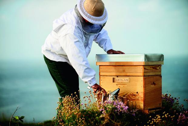 Фото №2 - Наталья Водянова в костюме пчеловода озвучила особое поздравление