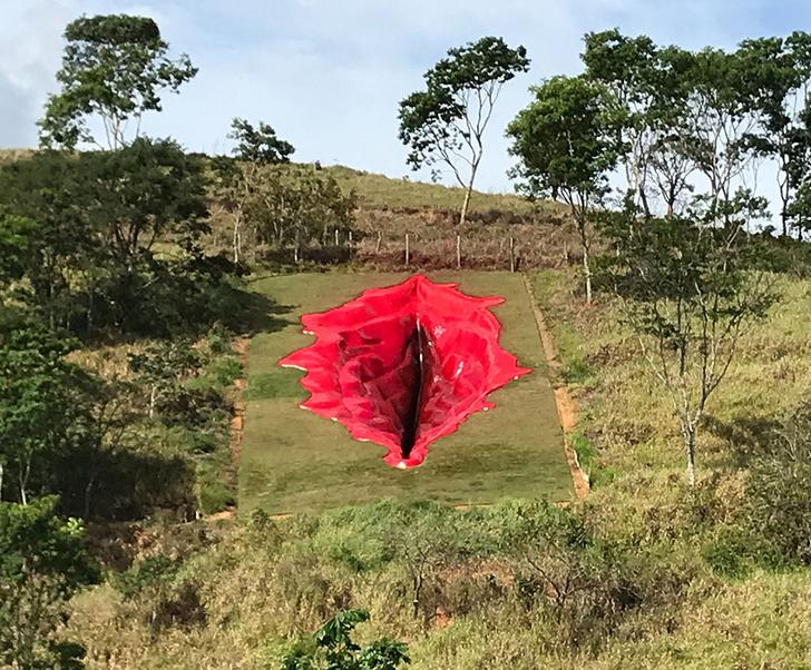 Фото №2 - Срам на горе: странный объект искусства в Бразилии