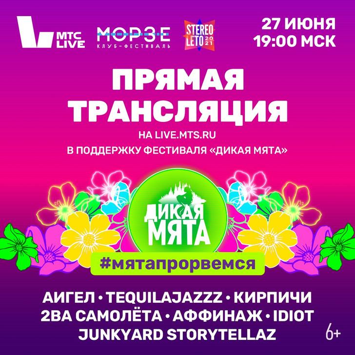 Фото №1 - Большой концерт в поддержку «Дикой мяты» пройдет в Петербурге