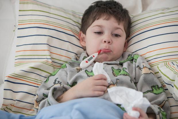Фото №1 - Вирусы и бактерии – в чем разница