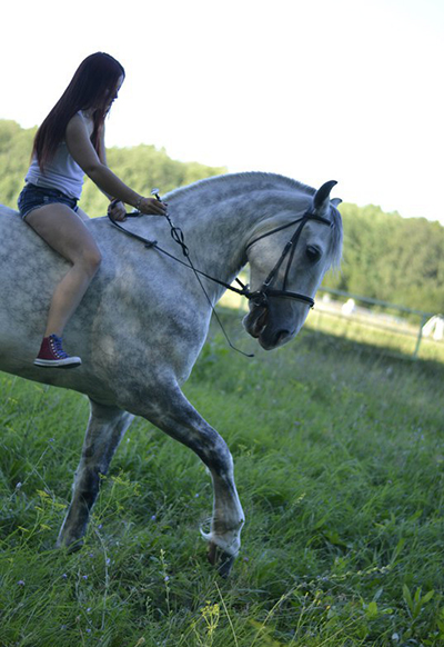 Фото №53 - Девушки на коне: самые романтичные наездницы Ульяновска