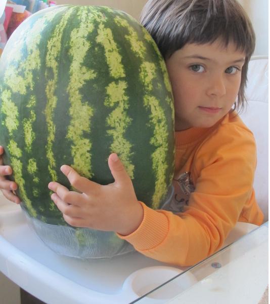 Фото №19 - Детский фотоконкурс «Готовимся к осени»: голосуем за лучшие кадры