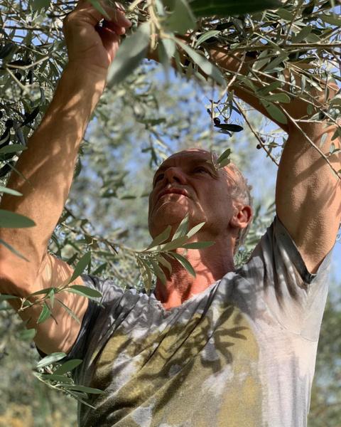 Фото №11 - Дачники Голливуда: 18 звезд, которые любят работать в саду