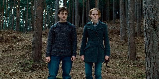 Фото №9 - «Гарри Поттер»: 9 сцен, которые доказывают, что Гарри и Гермиона соулмейты