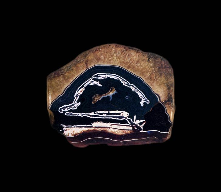 Фото №4 - Для эстетов: Дом Van Cleef & Arpels открыл выставку в Париже