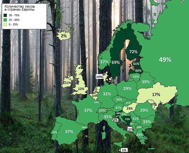 Фото №2 - Карта: сколько процентов территории занимают леса в странах Европы и России
