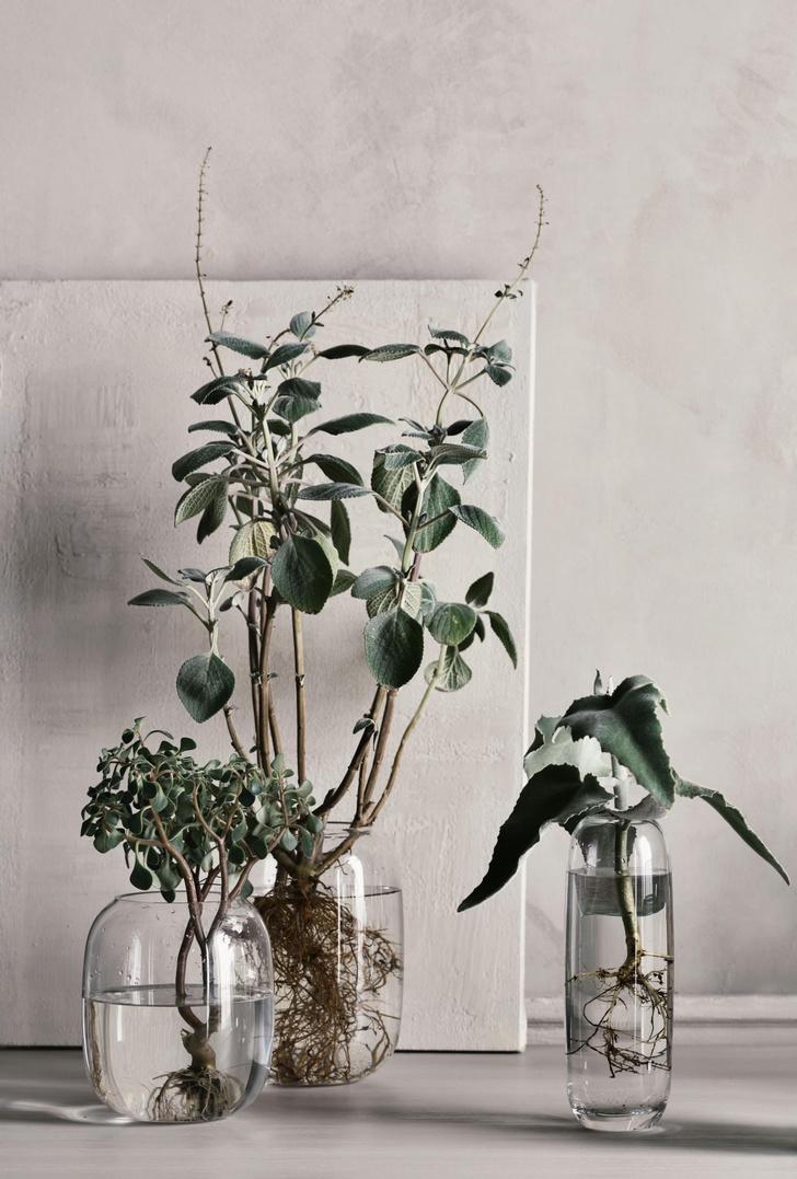 Фото №2 - Una: вазы-трансформеры Катерины Соколовой для марки Bolia