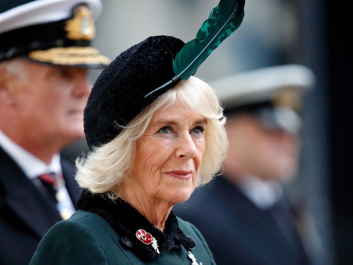 Фото №1 - Какой титул герцогиня Камилла получит после смерти принца Чарльза