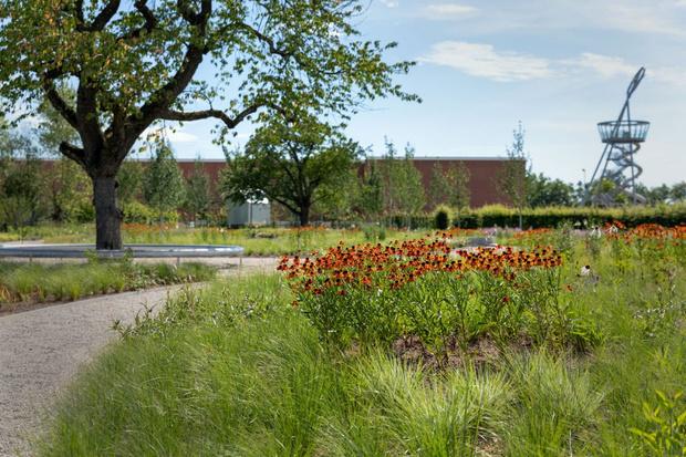 Фото №3 - Сад Пита Удольфа на кампусе Vitra