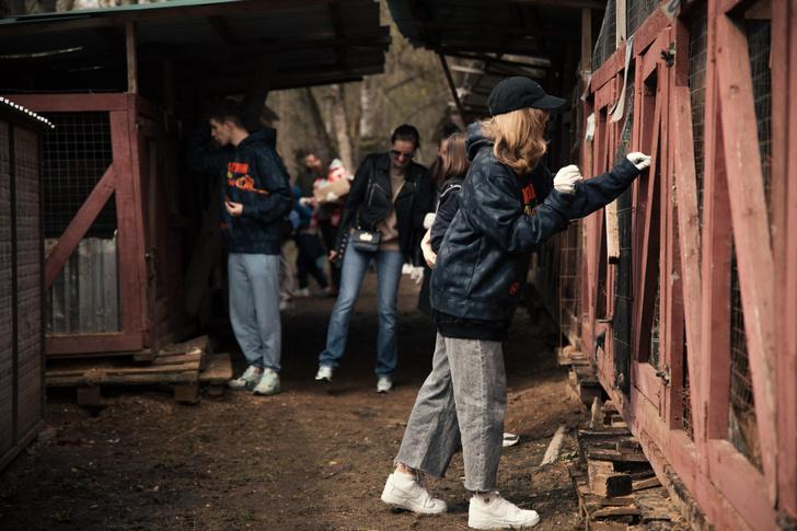 Фото №5 - Чек-лист твоей доброты: как встать на путь благотворительности