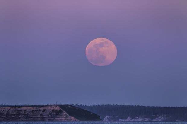 Фото №1 - Розовая луна: что это, когда наступает и как повлияет на все знаки зодиака