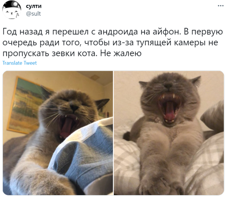 Фото №8 - Лучшие шутки о московских очередях за новыми айфонами