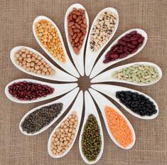 Полезные свойства бобовых. Учитесь правильно варить зеленую чечевицу