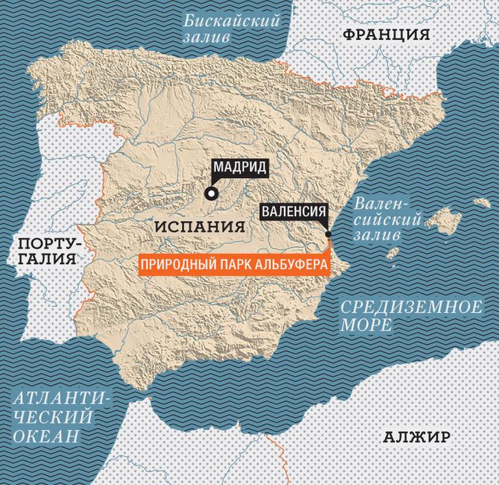 Фото №9 - Чем кормить испанцев: как исколесить с фуд-траком всю Испанию