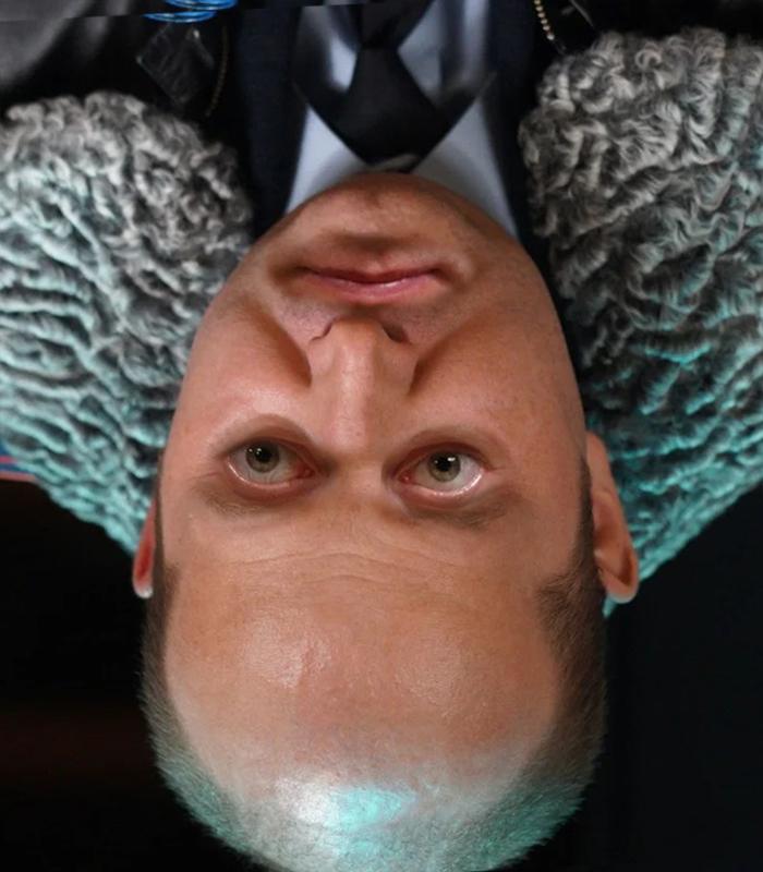 Фото №4 - Как работает классическая оптическая иллюзия, получившая название «Эффект Тэтчер»
