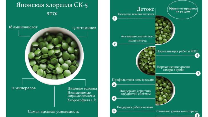 Фото №3 - Велнес-совет недели: добавить в рацион хлореллу для детокса и похудения