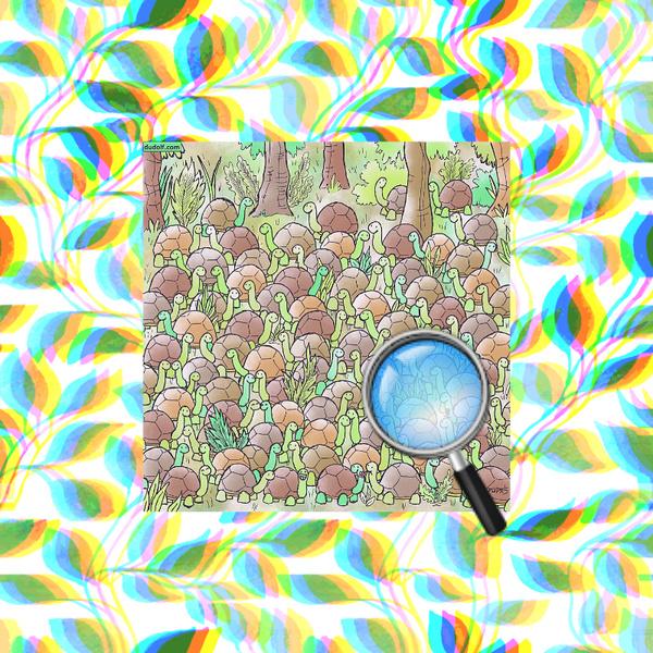 Фото №1 - Тест на глазастость: Сможешь разглядеть, где в стае черепашек спряталась змея?