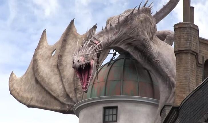 Фото №10 - «Гарри Поттер»: самые интересные и малоизвестные факты про драконов 🐲
