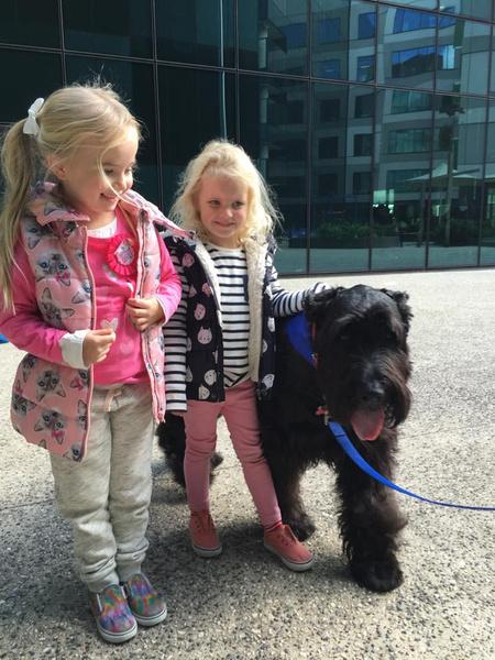 Фото №1 - Лучше, чем врач: пес-доктор помогает тяжелобольным малышам