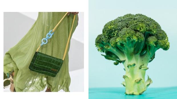 Фото №2 - Секретное оружие: как брокколи помогает эффективно похудеть за считанные дни