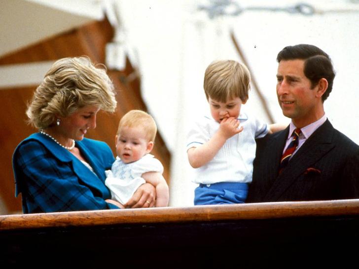 Фото №3 - Гнев будущего короля: что больше всего не нравится Чарльзу в королевской жизни