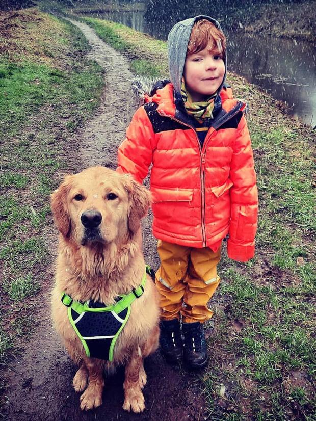 дети и собаки, собака поводырь