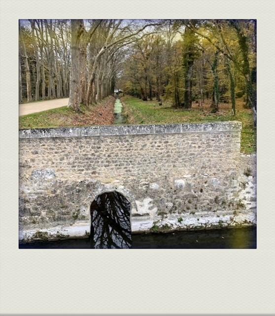 Фото №1 - Французский дневник Кристен Стюарт, который чудом попал к нам