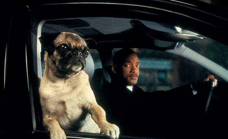 Фото №10 - Факты о фильмах «Люди в черном», которые не стереть из памяти