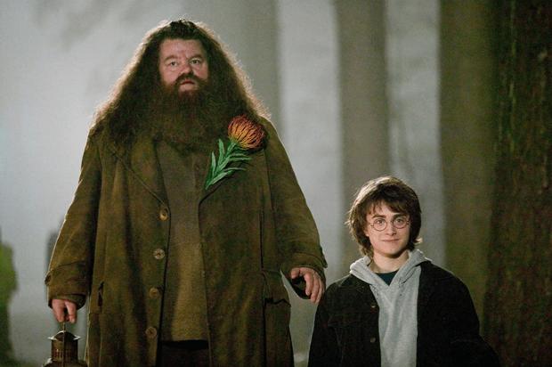 Фото №5 - Топ-10 самых прикольных бромансов в «Гарри Поттере»