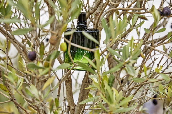 Фото №3 - Новые ароматы для мужчин L'Occitane