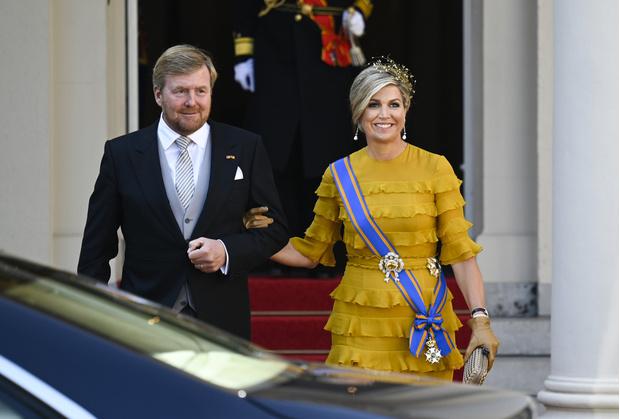 Фото №6 - Что особенного в платье Claes Iversen из гардероба нидерландской королевы Максимы и почему оно поменяло цвет?