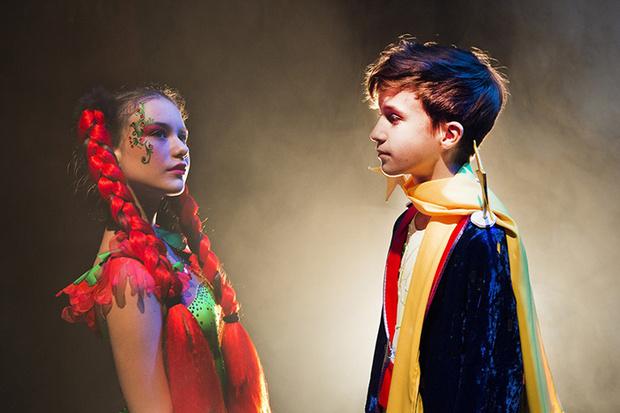 Фото №2 - Цирковое шоу-мюзикл «Маленький принц»