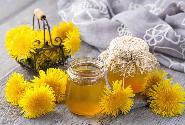 Фото №1 - Готовим мед из одуванчиков