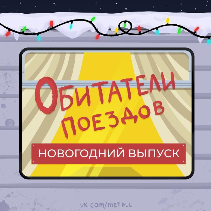 Фото №1 - 6 типичных обитателей российских поездов в Новый год