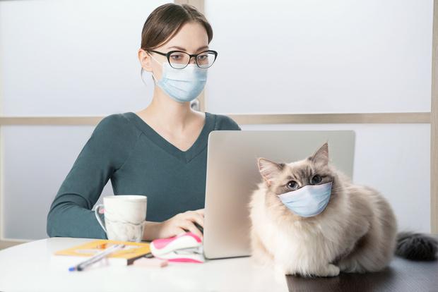 Фото №1 - Люди, отказывающиеся носить маску, часто бывают социопатами, а то и психопатами, считают психологи