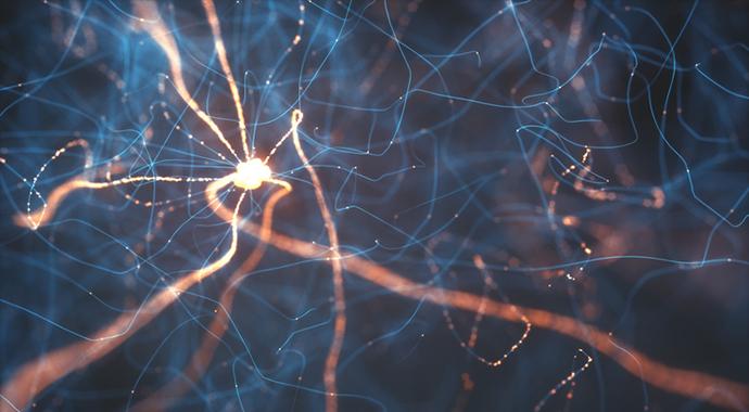 Почему все болезни от нервов и так ли это вообще?