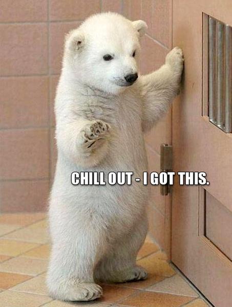 Фото №9 - Милота и угар: 20 дико ржачных мемов про животных