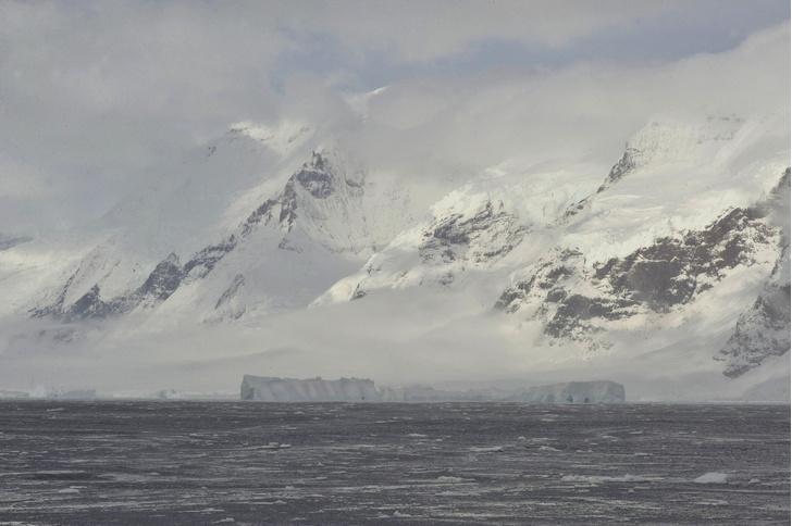 Фото №1 - Антарктиду открыли раньше, чем предполагалось