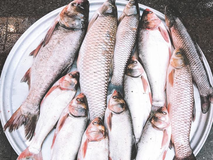 Черви в рыбе могут вызвать рак