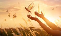 Благовещение: значение праздника и как его провести в условиях самоизоляции