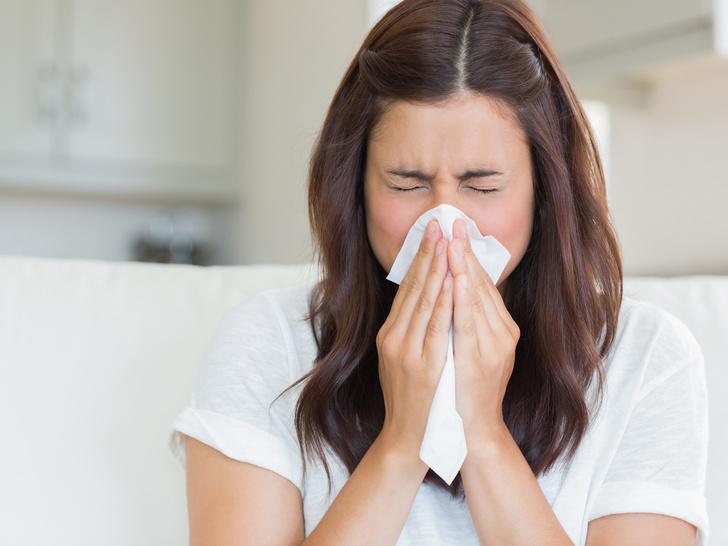 Фото №1 - Опасная привычка: почему никогда нельзя сдерживаться при чихании