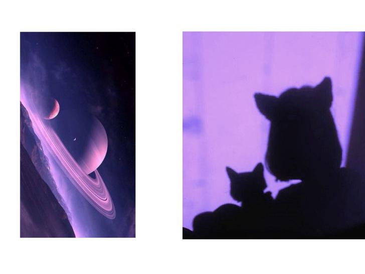 Фото №2 - Гид по гороскопу: все, что надо знать о полнолунии