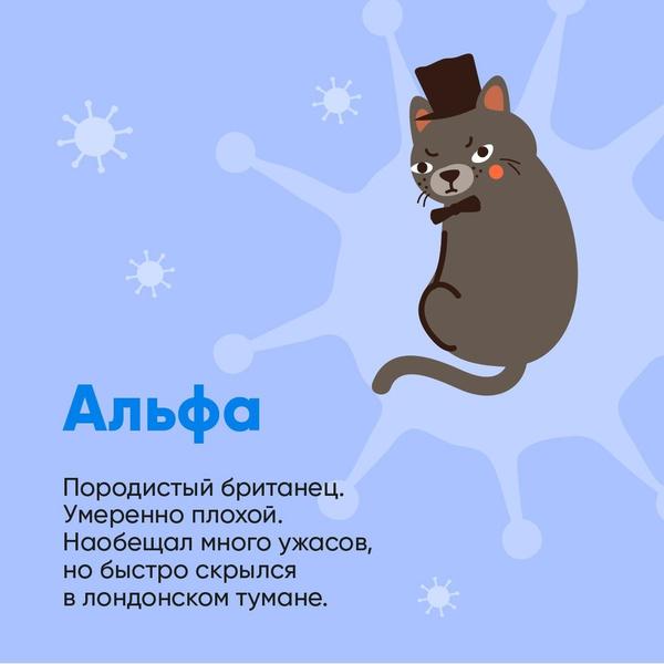 Фото №2 - Биолог Баранова сравнила штаммы коронавируса с милыми котиками: как они выглядят