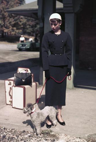 Фото №10 - Моя прекрасная леди: 15 модных уроков, которые сделали Одри Хепберн иконой стиля